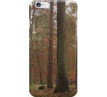 Autumn splendor of golden hues in misty forest iPhone Case/Skin