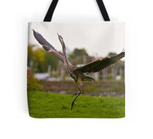 Dance try outs - Ottawa, Ontario Tote Bag
