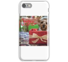 Merry Christmas  Yorkie in a box iPhone Case/Skin