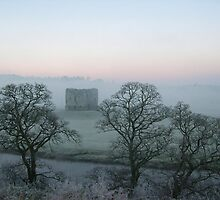Grennan Castle Outside Thomastown in Kilkenny on a Frosty Morning by Mark O'Toole