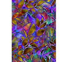 Floral Abstract Stained Glass Photographic Print