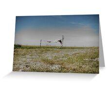 Prairie Dryer Greeting Card
