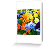 Painted Pansies Greeting Card