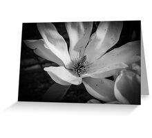 Black and White Flower 1 Greeting Card