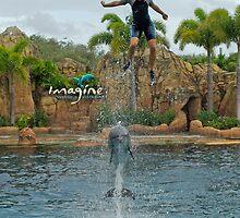 Dolphin Power by Aussiebluey