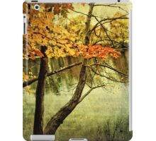 A Tranquil  Autumn Day iPad Case/Skin