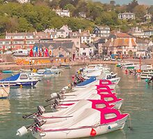 Boats in the Harbour at Lyme Regis Dorset UK by Pauline Tims