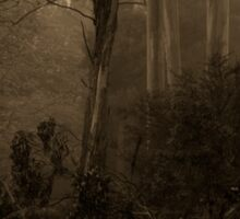 Sepia Times - Mount Wilson  NSW - The HDR Experience Sticker