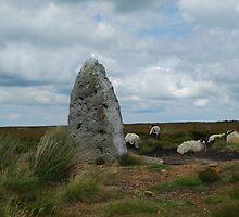 Standing Stone on the NYM, and some locals, Baa-sil,  Baa-bra..... by dougie1