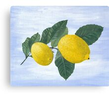 Oil painting of a lemon tree branch with two lemons, isolated on an acrylic painted background Canvas Print