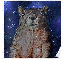 Squirrel in Space Poster