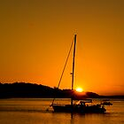 Nelson Bay Sunset No 1 by Rosalie Dale