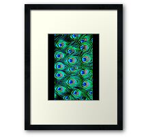 Peacock Feathers iPhone / Samsung Galaxy Case Framed Print