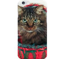 I Am Not Happy...This Basket Is Too Small! iPhone Case/Skin