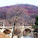 Bridge at Mount Penn by Judi Taylor