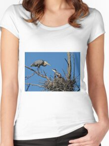 Great Blue Heron with Babies - Ottawa, Ontario Women's Fitted Scoop T-Shirt