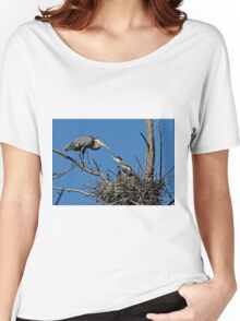 Great Blue Heron with Babies - Ottawa, Ontario Women's Relaxed Fit T-Shirt
