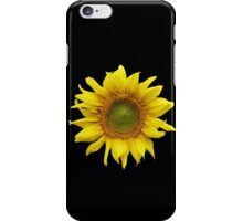 Sunny Sunflower iPhone Case/Skin