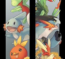 pokemon 3rd gen starters megaevolved cool design by MasterRacePC