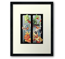 pokemon 3rd gen starters megaevolved cool design Framed Print