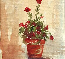 Indoor Geranium by Maree  Clarkson