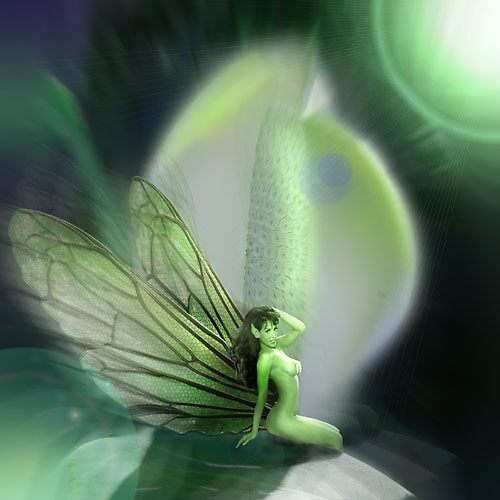 Erotic Faerie by David Knight