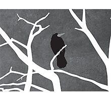 Gray Day Photographic Print