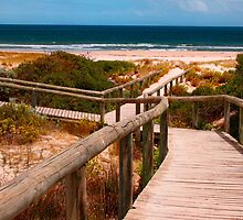 Pathway to the Beach by jwwallace