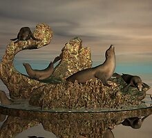 The Harbour Seals by Lisa  Weber