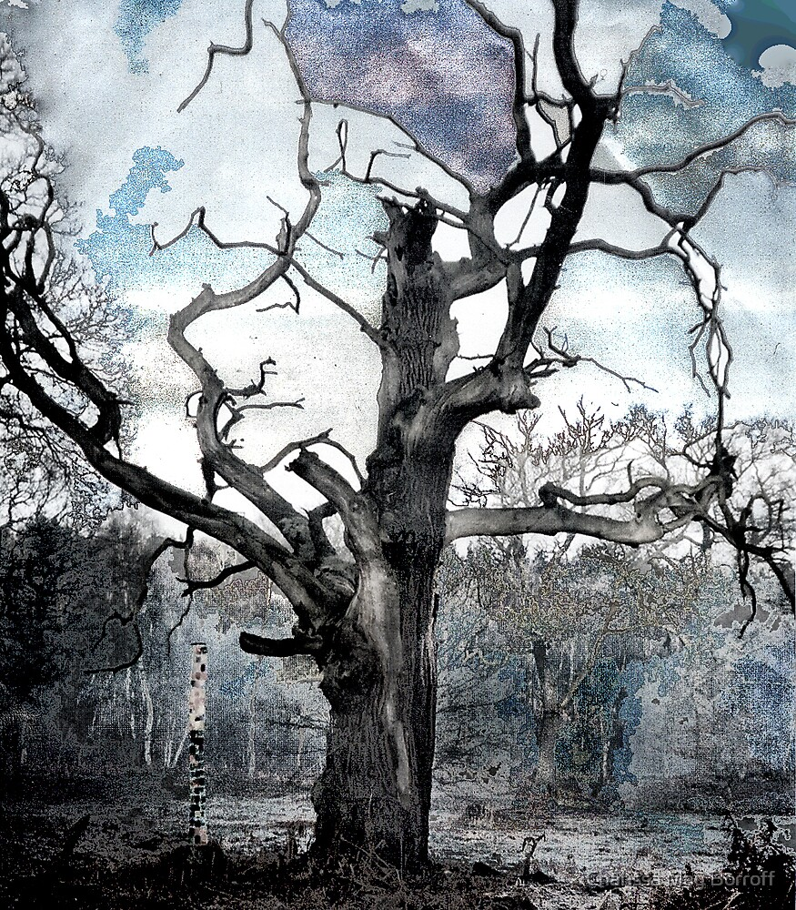Cloudbusting by Charissa May Borroff