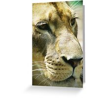 Big Cat Greeting Card