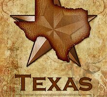 Texas Independence - The Lone Star State by Susan Sowers