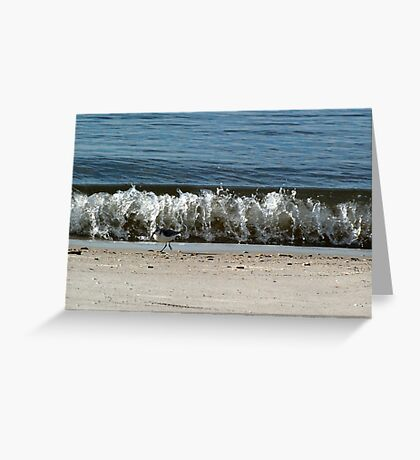 sandpiper and wave Greeting Card