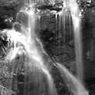 silk cascade by Troy Spencer