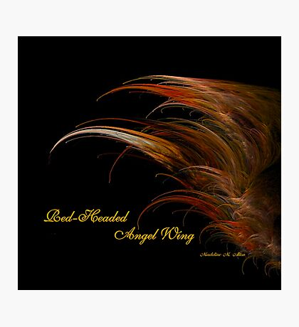 Red-Headed Angel Wing Photographic Print