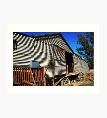 The Old Shearing Shed (Barn)  Art Print