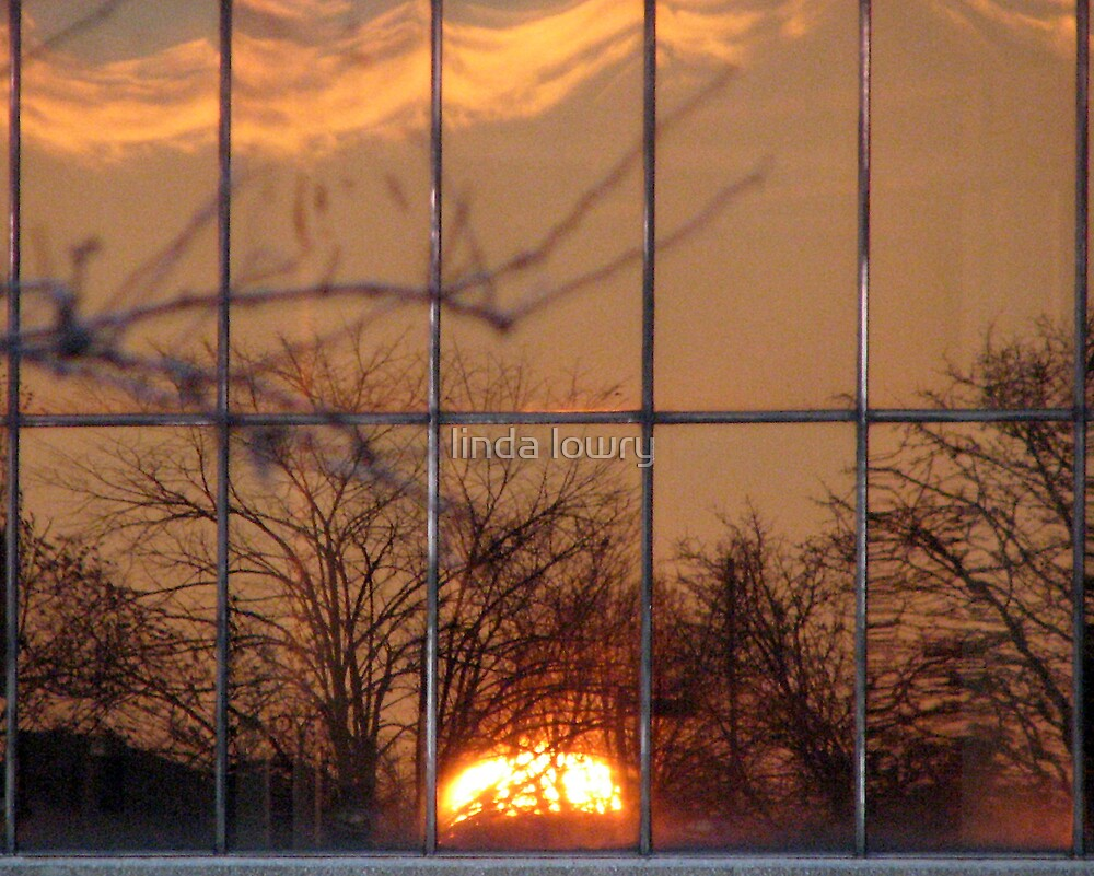 Arena Sunset by linda lowry