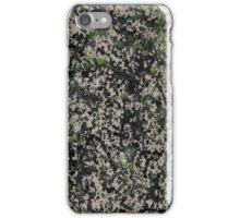 Lorne Splatter #5 iPhone Case/Skin