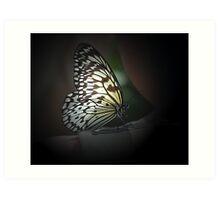 Light Wings Art Print