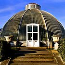 Palm House by Trevor Patterson