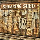 The Shearing Shed At Wilberforce by Michael Matthews