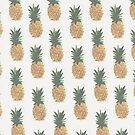 Pineapple by biancababee