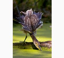 Juvenile Black Crowned Night Heron - Mudd Lake Ottawa Unisex T-Shirt