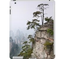 Zhangjiajie National Forest Park panoramic scenery art photo print iPad Case/Skin