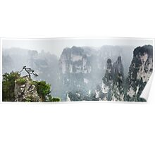 Tree on a cliff at Zhangjiajie National Forest Park art photo print Poster