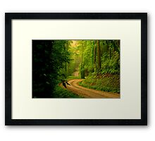 Low Gap Road  Framed Print