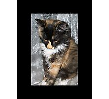 Lovely Lucy Photographic Print