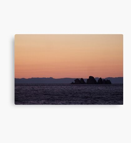 Shag Rock, Whiteway, Newfoundland Canvas Print