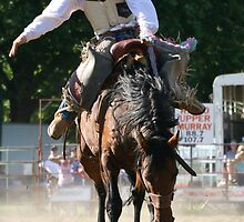 Riding high by Dave Preston