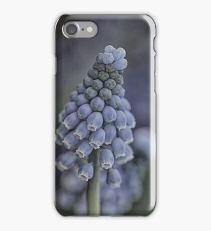 Blue promise of spring iPhone Case/Skin